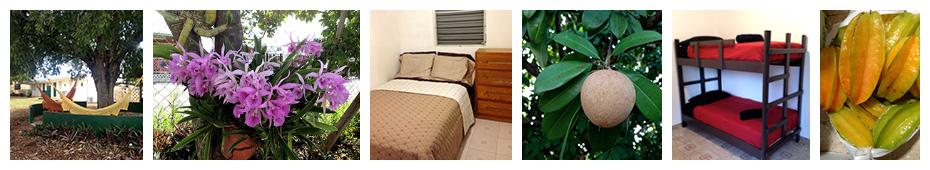 Cabanas Miranda in Cabo Rojo, Puerto Rico vacation rentals and hostel.